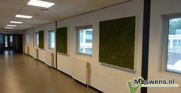 Fontys Moswand metlijst mosschilderij Moswens.nl (3)