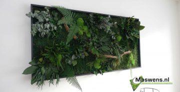 Junglewand Moswand Moswens.nl Jungleschilderij 01