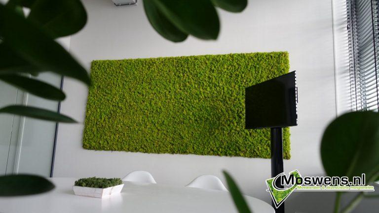 Kantoor vergaderruimte Moswand Mosschilderij Moswens.nl (2)