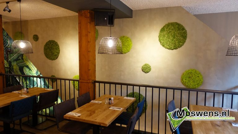 Moscirkels Cafe ONS Eindhoven Moswand Moswens.nl. (1)
