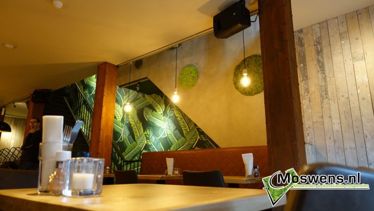 Moscirkels Cafe ONS Eindhoven Moswand Moswens.nl. (2)