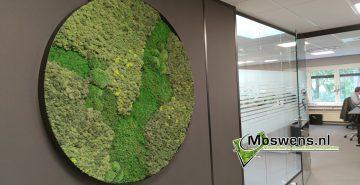 ronde mosschilderij kantoor