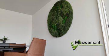 Mosschilderij gemixte mossoorten ronde moswand