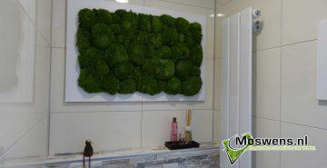 Mosschilderij Toilet bolmos Moswens