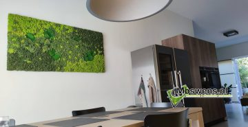 Mosschilderij keuken mossenmix mosmuur