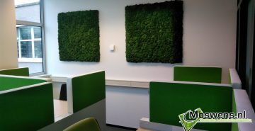 Moswand Forest Fontys Eindhoven Moswens.nl (1)