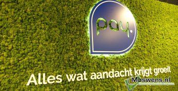 Moswand PAY.nl Moswens Moslogo LED 01