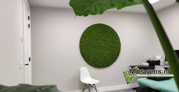 Moscirkel Moswand cirkel van mos