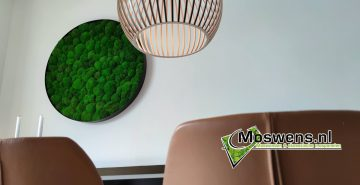Mosschilderij bolmos bij eetkamer tafel