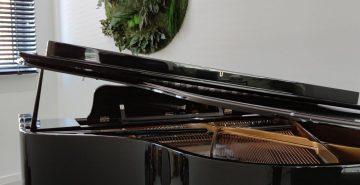 Jungleschilderij ronde junglewand boven piano