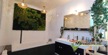 moswand mosschilderij badkamer mossenmix
