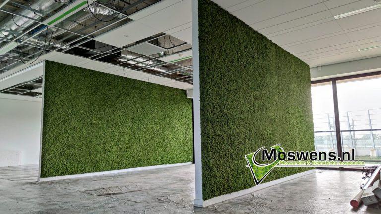 Moswand kantoor kantoortuin met mos