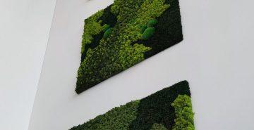 Mosschilderijen mospanelen