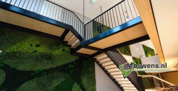 Moswand gemeente Bolswaard Friesland mosschilderij