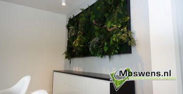Moswens Junglewand 03
