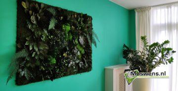 Junglewand plantenwand met woonkamer keuken