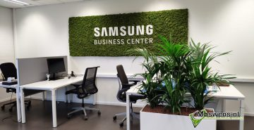 Samsung Moswand